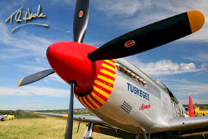 "WWII Red Tail P-51 ""Tuskegee Airmen"" Mustang"